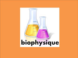 Cours de Biophysique