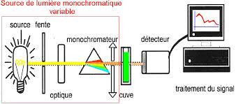 Techniques d'Analyses Biologiques L3 Microbiologie